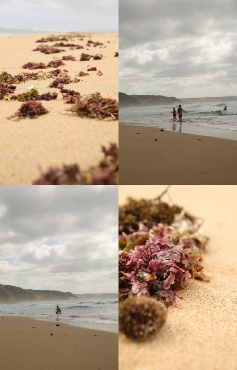 The beautiful Bosbokfontein beach..